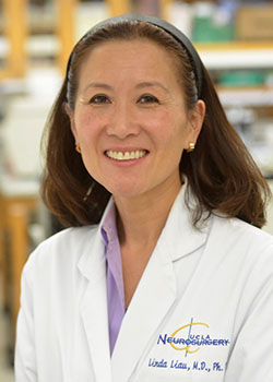 UCLA researchers discover an immunotherapy combination that effectively treats advanced brain cancer in pre-clinical models